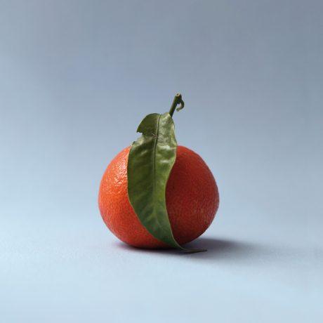07_plakat-clementine_01